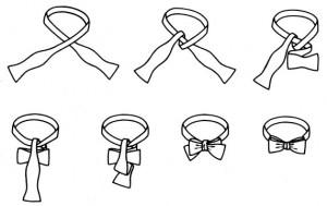 Сшить бабочку -галстук не только просто , но и модно!