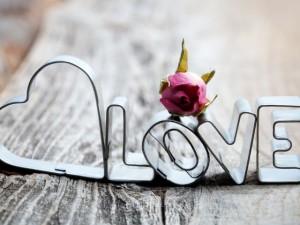 Цвет твоей любви